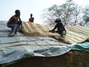 Placing and affixing thatching
